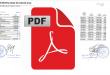imagen-previa-fonacide-pdf