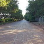 asfalto-avda-colonias-unidas-4