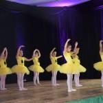 ballet-clausura-2017-11